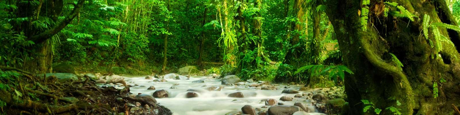 Costa Rica Immobili - Case vacanza, immobili di prestigio, immobili sulla spiaggia - Investimenti di valore